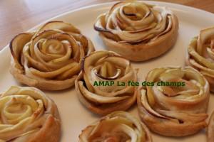 roses pétales pommes amap